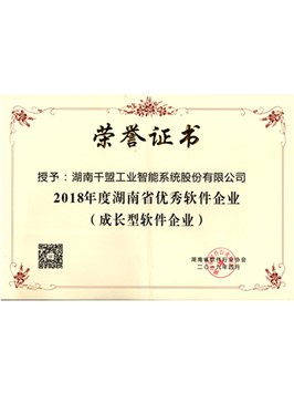 2018 Excellent Software Enterprise of Hunan Province